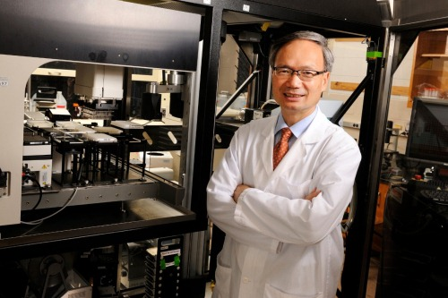 Photo of Emory is awarded subcontract for National Cancer Drug Discovery Network